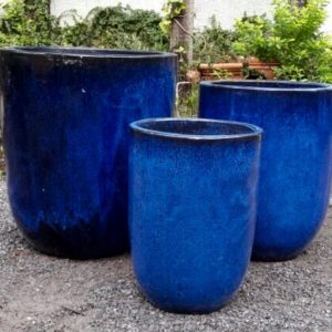 Oscar Planter BLUE