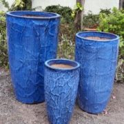 Root Planter BLUE