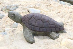 Manni the Sea Turtle