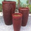 Root Planter REDWINE