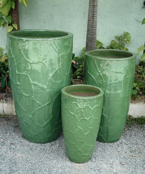 Root Planter Wasabi