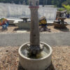 """43"""" Lighthouse fountain by Massarelli (shown at White House Gardens)"""