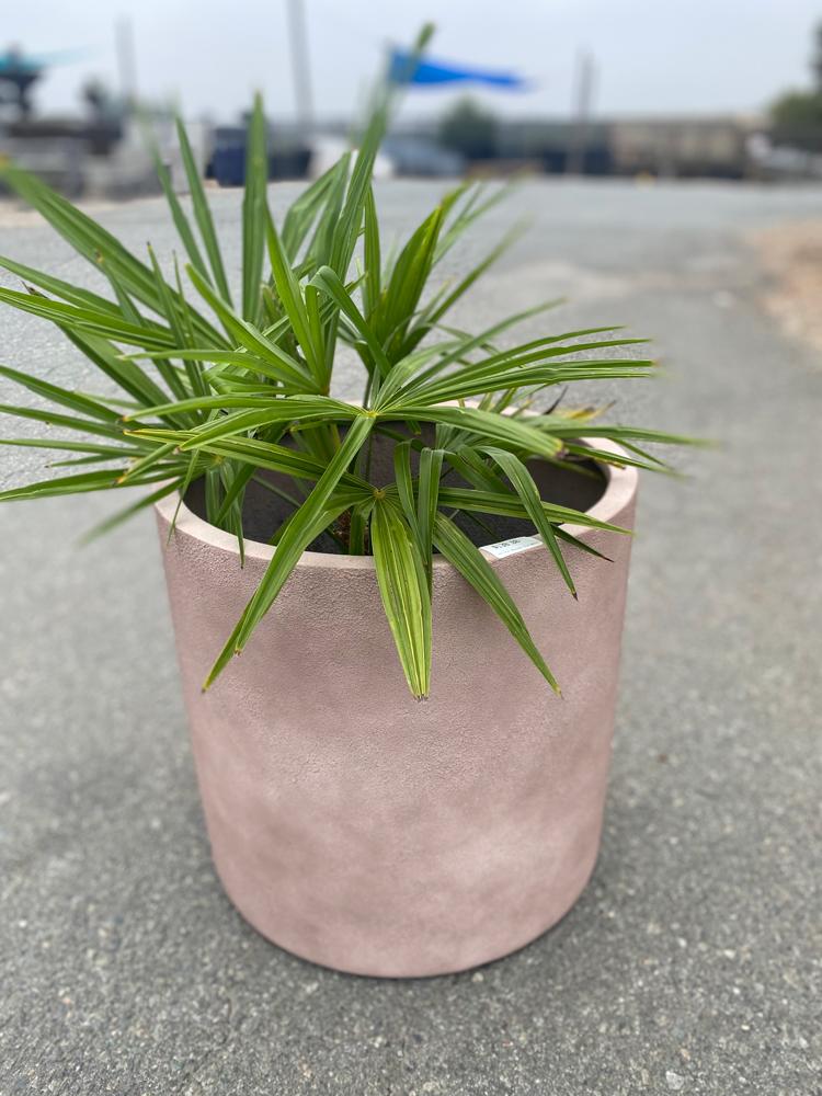 Poly Stone Pot